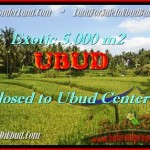 Beautiful LAND IN Sentral Ubud BALI FOR SALE TJUB449