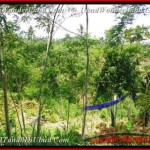 Magnificent 2.670 m2 LAND FOR SALE IN UBUD TJUB451