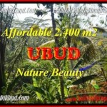 Magnificent PROPERTY LAND IN Ubud Pejeng BALI FOR SALE TJUB454