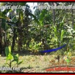 Beautiful PROPERTY Ubud Pejeng BALI LAND FOR SALE TJUB454