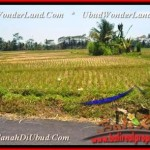 Magnificent 10.000 m2 LAND FOR SALE IN UBUD TJUB456