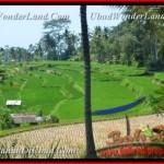 FOR SALE Affordable 10.000 m2 LAND IN Ubud Pejeng BALI TJUB456