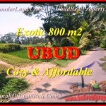 Affordable PROPERTY Ubud Tampak Siring BALI LAND FOR SALE TJUB457