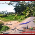 Exotic UBUD 800 m2 LAND FOR SALE TJUB457