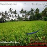 Exotic 2,000 m2 LAND IN UBUD BALI FOR SALE TJUB485