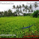 FOR SALE Affordable PROPERTY 2,000 m2 LAND IN UBUD BALI TJUB485