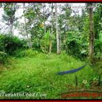 Affordable LAND SALE IN Ubud Payangan BALI TJUB486