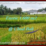 Beautiful 1,600 m2 LAND SALE IN UBUD BALI TJUB487