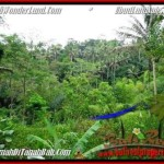 Beautiful PROPERTY Ubud Tegalalang 2,000 m2 LAND FOR SALE TJUB490