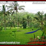 Exotic PROPERTY 2,000 m2 LAND FOR SALE IN Ubud Tegalalang TJUB490