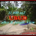 LAND FOR SALE IN Ubud Payangan BALI TJUB431