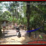 Affordable LAND IN Ubud Payangan BALI FOR SALE TJUB431