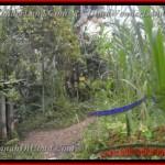 Magnificent LAND SALE IN Ubud Payangan BALI TJUB431