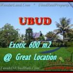Exotic LAND IN Sentral Ubud BALI FOR SALE TJUB437