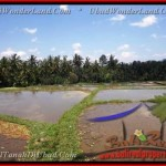 Affordable PROPERTY 8.000 m2 LAND IN UBUD BALI FOR SALE TJUB441