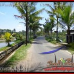 Exotic PROPERTY UBUD BALI 8.000 m2 LAND FOR SALE TJUB441