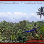 Magnificent PROPERTY 8.000 m2 LAND SALE IN UBUD BALI TJUB441