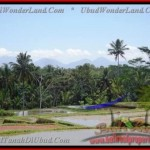 FOR SALE Beautiful PROPERTY 8.000 m2 LAND IN UBUD BALI TJUB441