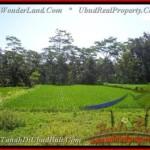 Exotic PROPERTY UBUD BALI 2.885 m2 LAND FOR SALE TJUB442