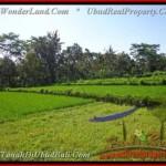 FOR SALE Beautiful PROPERTY 2.885 m2 LAND IN UBUD BALI TJUB442
