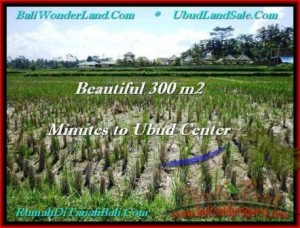 Beautiful PROPERTY LAND FOR SALE IN UBUD TJUB500