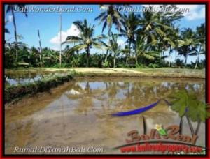 Exotic PROPERTY UBUD BALI LAND FOR SALE TJUB501