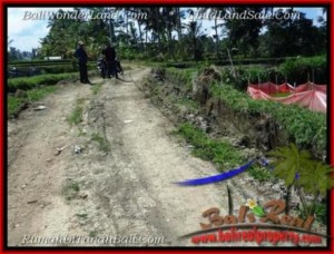 Magnificent PROPERTY 1,000 m2 LAND IN Sentral Ubud BALI FOR SALE TJUB501