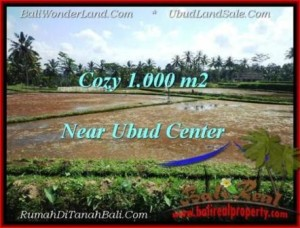1,000 m2 LAND IN UBUD FOR SALE TJUB501