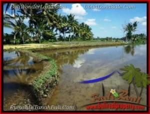 Affordable PROPERTY Sentral Ubud BALI 1,000 m2 LAND FOR SALE TJUB501