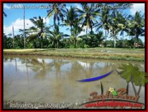 Affordable 1,000 m2 LAND SALE IN Sentral Ubud TJUB501