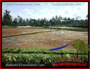 FOR SALE Exotic PROPERTY LAND IN UBUD BALI TJUB501