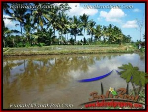 Exotic LAND FOR SALE IN UBUD BALI TJUB501