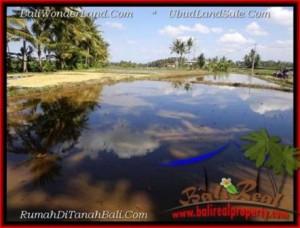 FOR SALE Magnificent 1,000 m2 LAND IN Sentral Ubud TJUB501