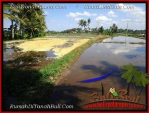 Beautiful PROPERTY LAND FOR SALE IN Sentral Ubud TJUB501