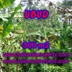 Affordable Sentral Ubud BALI LAND FOR SALE TJUB415