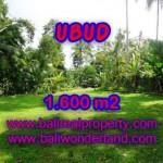 Magnificent UBUD BALI 1,600 m2 LAND FOR SALE TJUB416