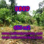LAND IN Sentral Ubud BALI FOR SALE TJUB417