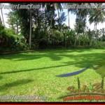 FOR SALE Affordable PROPERTY 1,600 m2 LAND IN UBUD BALI TJUB416