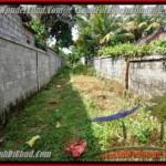 Exotic LAND SALE IN Sentral Ubud BALI TJUB417
