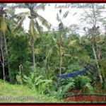 Exotic LAND SALE IN Ubud Tegalalang BALI TJUB421
