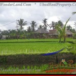 Beautiful UBUD BALI 1,000 m2 LAND FOR SALE TJUB424