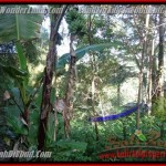 Magnificent 400 m2 LAND IN UBUD BALI FOR SALE TJUB425