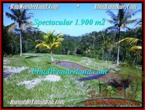 Beautiful 1,900 m2 LAND FOR SALE IN UBUD BALI TJUB505
