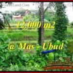 FOR SALE Affordable PROPERTY 12,000 m2 LAND IN UBUD BALI TJUB492