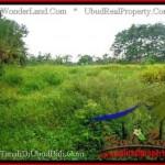 Sentral Ubud BALI LAND FOR SALE TJUB492