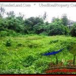 Affordable LAND SALE IN Sentral Ubud BALI TJUB492