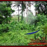 Beautiful PROPERTY Sentral Ubud 12,000 m2 LAND FOR SALE TJUB492