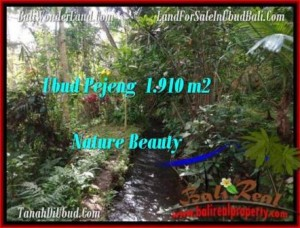 FOR SALE Magnificent 1,910 m2 LAND IN UBUD TJUB504