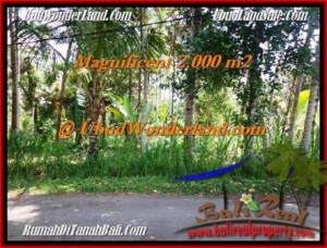 Affordable PROPERTY 2,000 m2 LAND IN UBUD BALI FOR SALE TJUB506