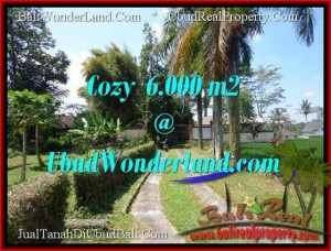 Exotic 6,000 m2 LAND FOR SALE IN Sentral Ubud BALI TJUB507